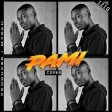 Pami Cover