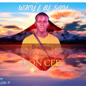 Don Cee - why e be say